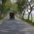 村へと続く道